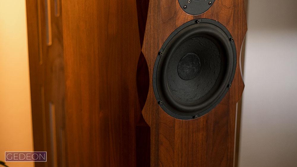 Taylor Acoustic Paganini IV hangfal