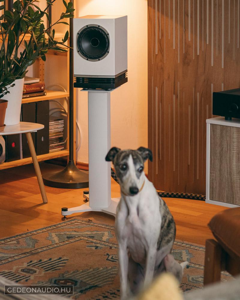 fyne audio f500 hangfal gedeon